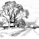 Sketch of Trees by East