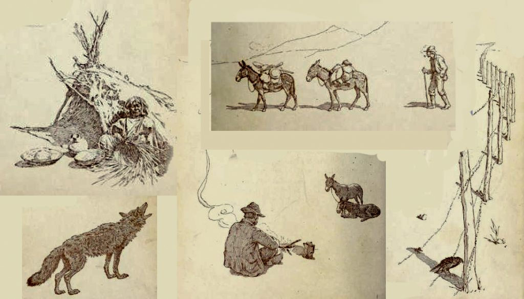 Illustrations of prospectors and an Indian basketmaker