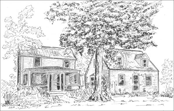 2 small houses, 1 large tree