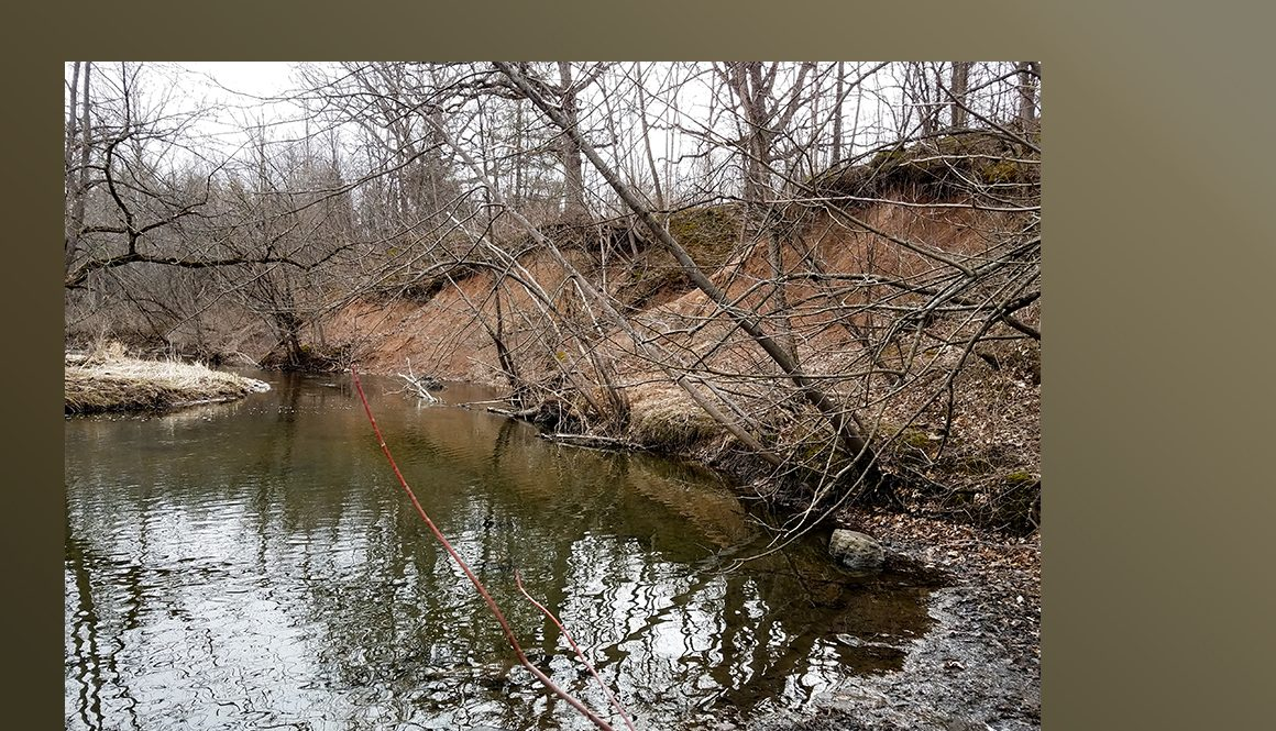Photo of Eroded Bank on Stream