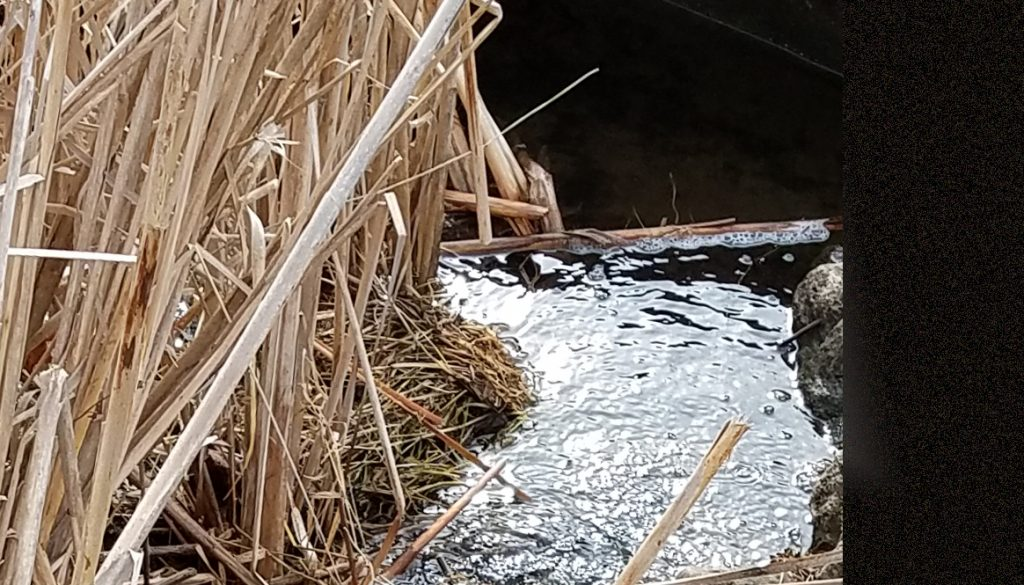Photo of stream in a drainage ditch along 4-lane highway