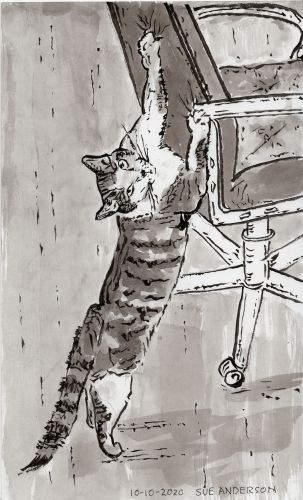 Drawing of cat clawing chair